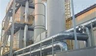 催化氧化炉CO