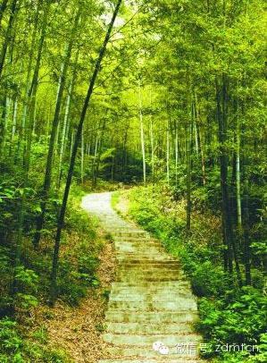 4.濮塘风景区(距离